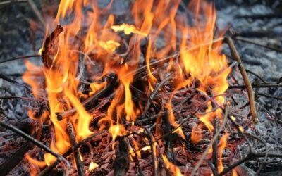Tænd din indre kreative ild – og lad den brænde